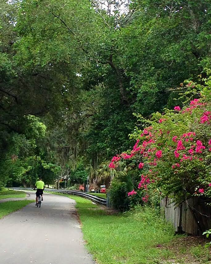 Fred Marquis Pinellas Trail Pinellas Trail  'Beautiful foliage along trail in Palm Harbor'
