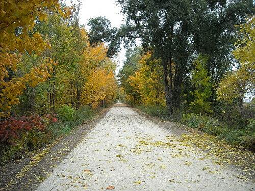 Fred Meijer Clinton-Ionia-Shiawassee Trail Fred Meijer CIS Trail Photo courtesy Michigan Department of Natural Resources