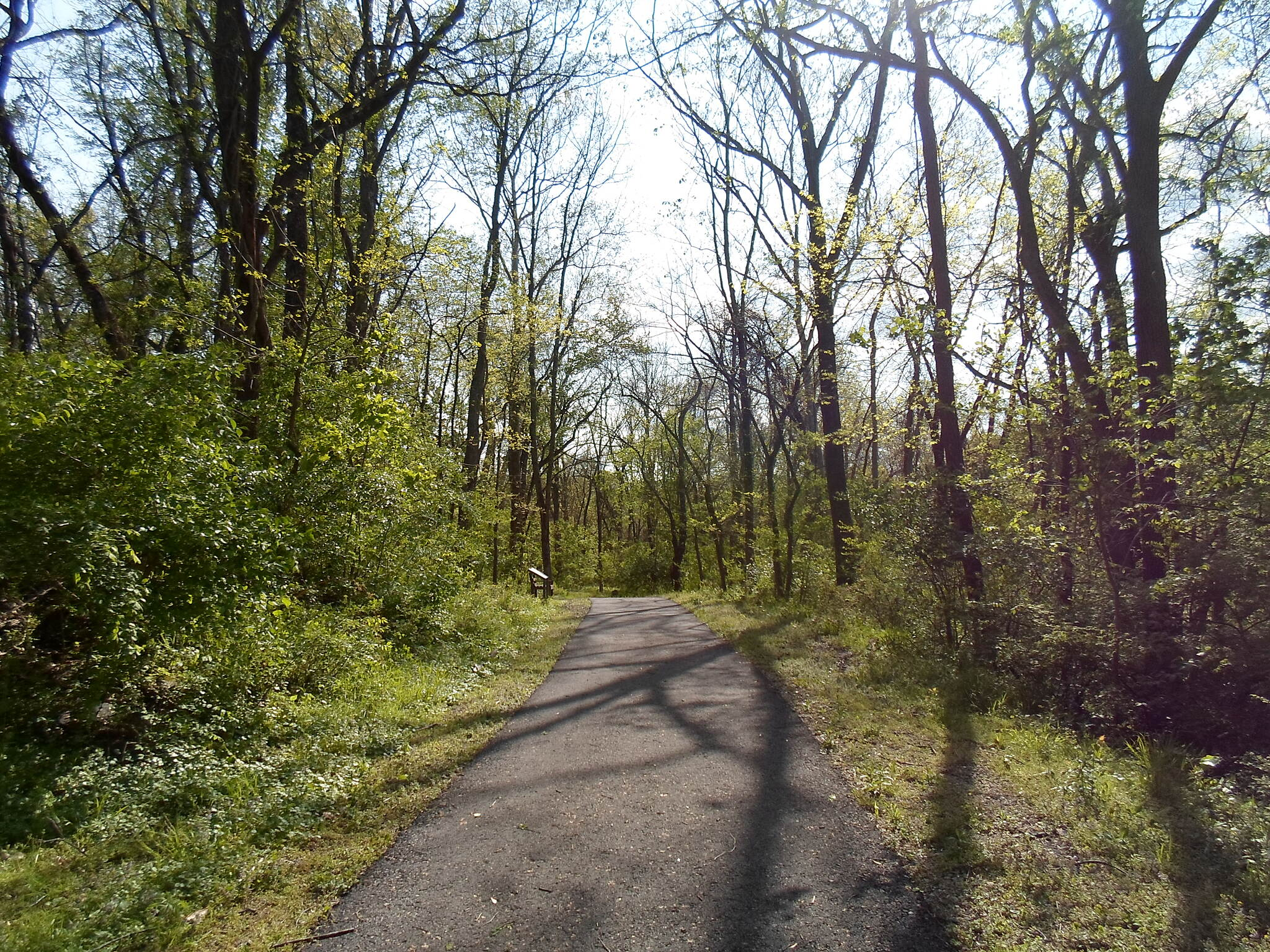 French Creek Trail French Creek Heritage Trail The woods is coming alive with the colors of spring on the paved portion of the trail. Taken May 2016.