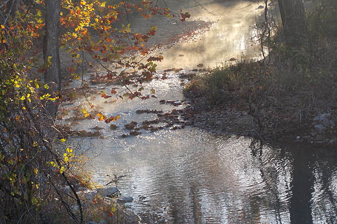 Frisco Greenway Trail Sunrise Fog on Turkey Creek The view of Turkey Creek, from the very scenic bridge, is softened by radiation fog in the rising sunlight palette. Deer can sometimes be seen along the banks nearby, at various times of the day.