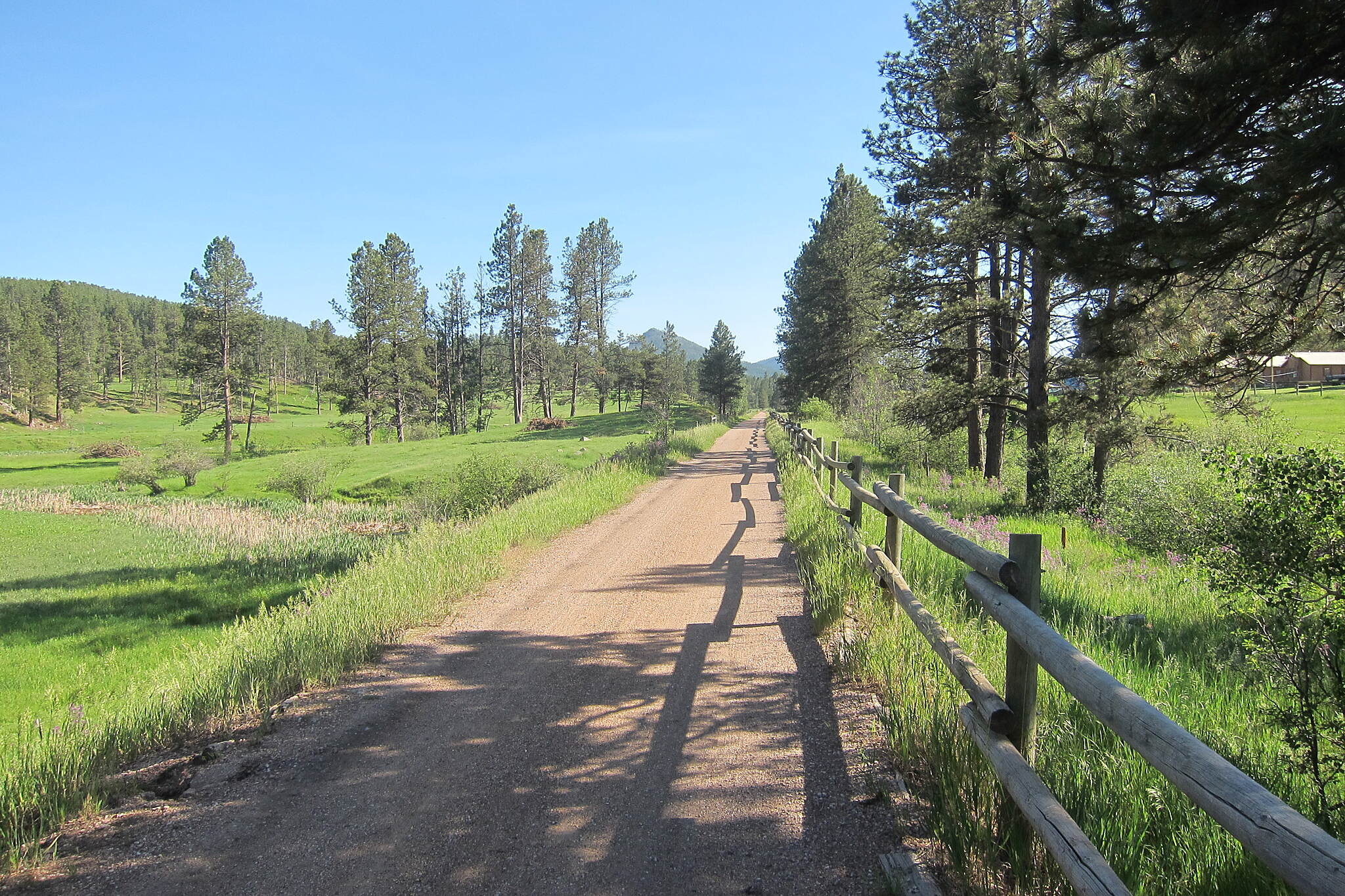 George S. Mickelson Trail Fence shadows This is an area outside of Hill City heading Southbound towards Crazy Horse.