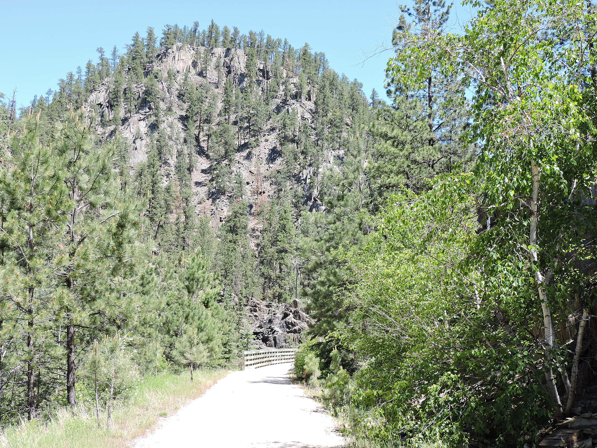 George S. Mickelson Trail North of Hill City