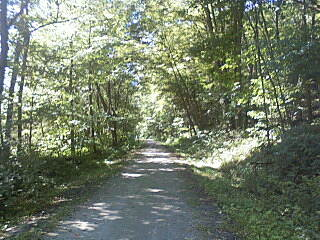 Ghost Town Trail long road home trail from vintondale to wehrum
