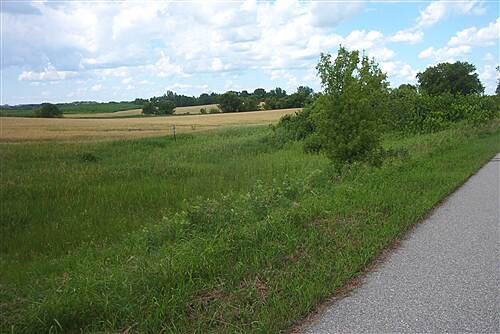 Glacial Lakes State Trail  Scene N of Willmar