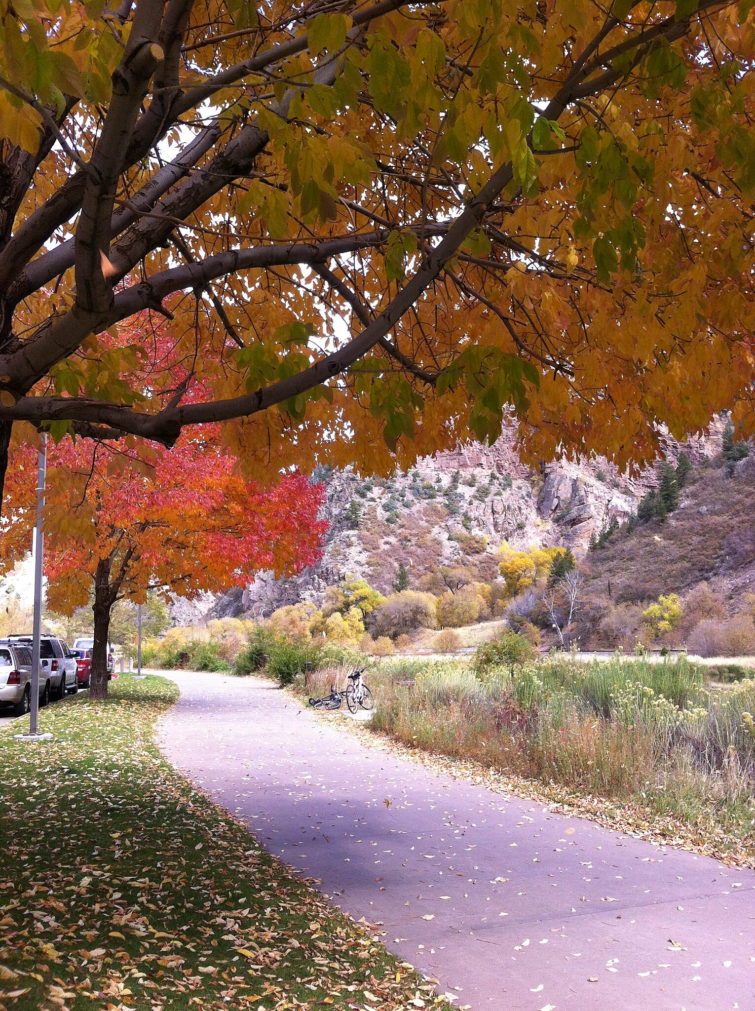 Glenwood Canyon Recreation Trail Fall Color