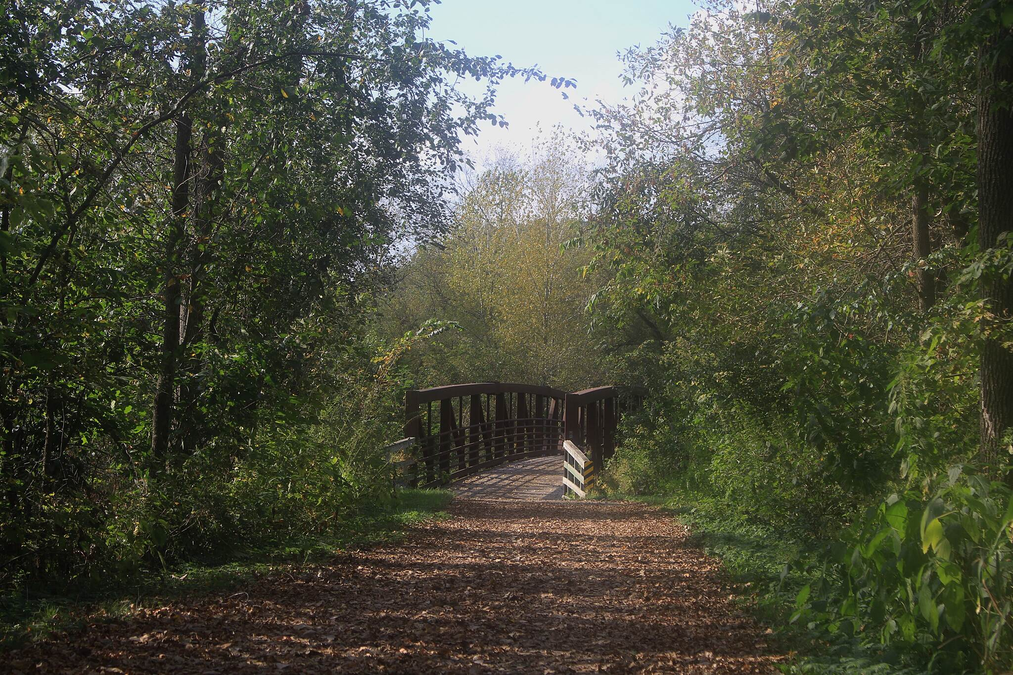 Goodhue Pioneer State Trail A Fall View Beautiful bridge, leaf covered path, and trees changing color.  That's the life!