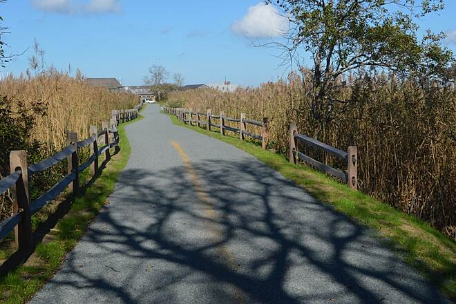 Goose Pond Path A short but scenic trail on Nantucket island Photo by Dick Mackay