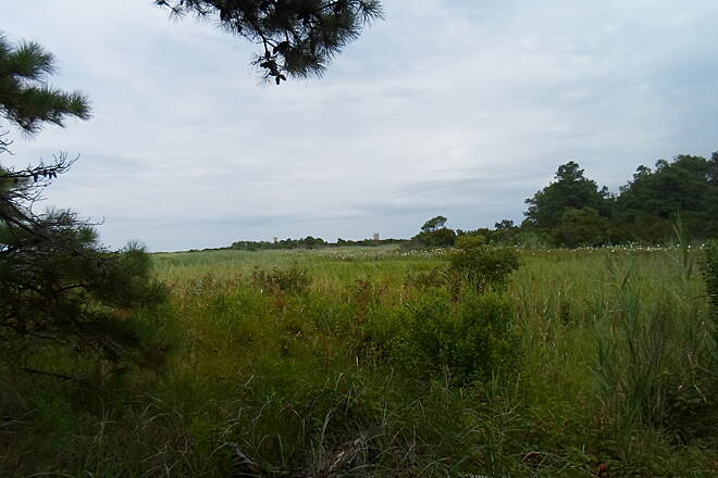 Gordons Pond Trail Gordons Pond Trail Looking across the coastal marsh towards one of the World War II-era observation towers on the beach. Taken July 2015.