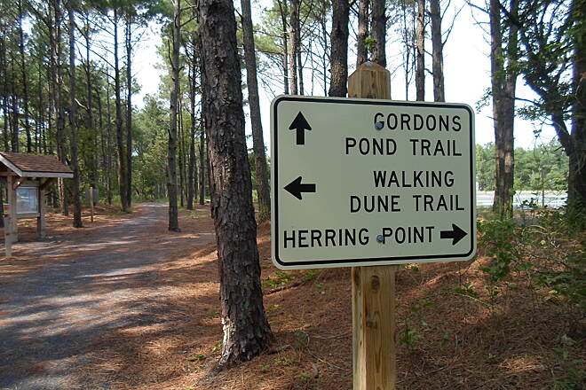 Gordons Pond Trail Gordons Pond Trail Direction sign at the trail junction between the Gordons Pond and Walking Dunes trails west of Herring Point.