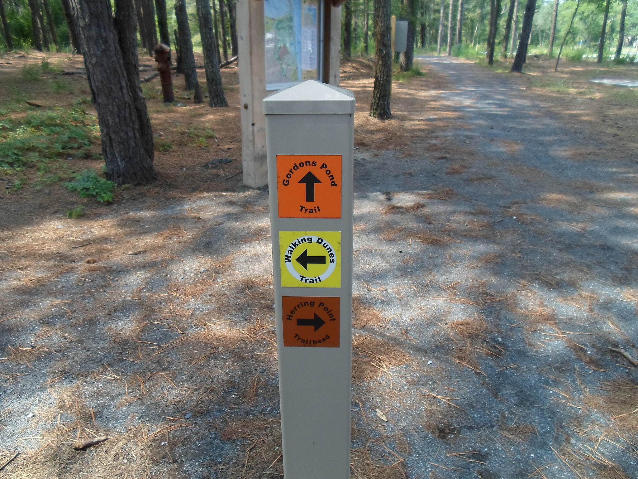 Gordons Pond Trail Gordons Pond Trail One of Delaware's small, but colorful trail directional signs at the Herring Point trailhead.
