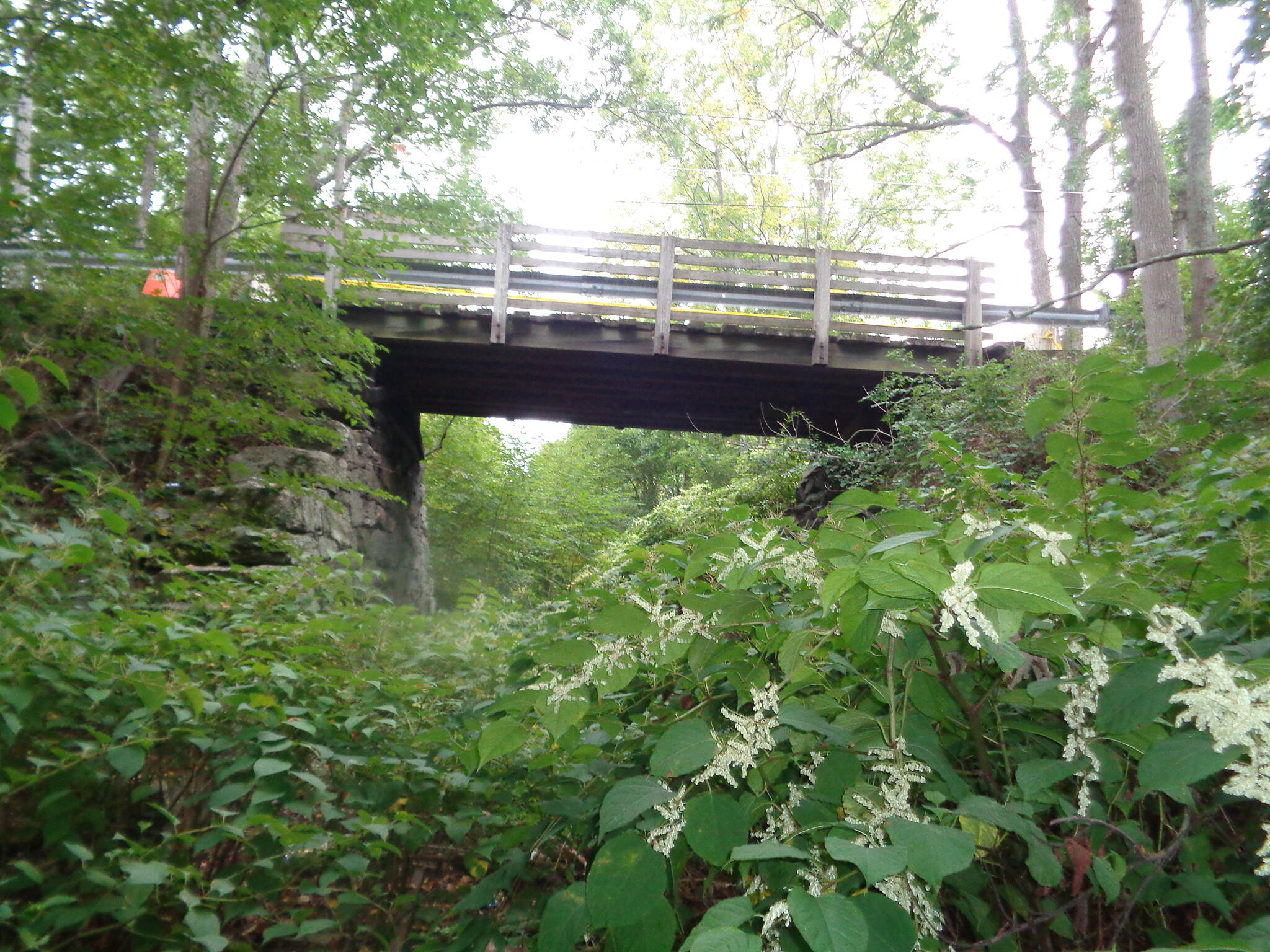 Grand Trunk Trail Carpenters Rd bridge View looking west under the Carpenters Road Bridge, Dudley. Bridge is closed to traffic. It is proposed to replace it with a fill.