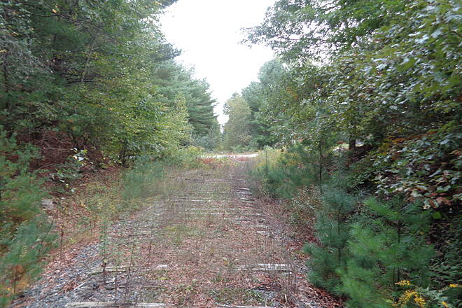 Grand Trunk Trail Laporte Rd Trail looking west approaching Laporte Road, Thompson, CT. Note crossties still in ground and overgrown trail beyond road.