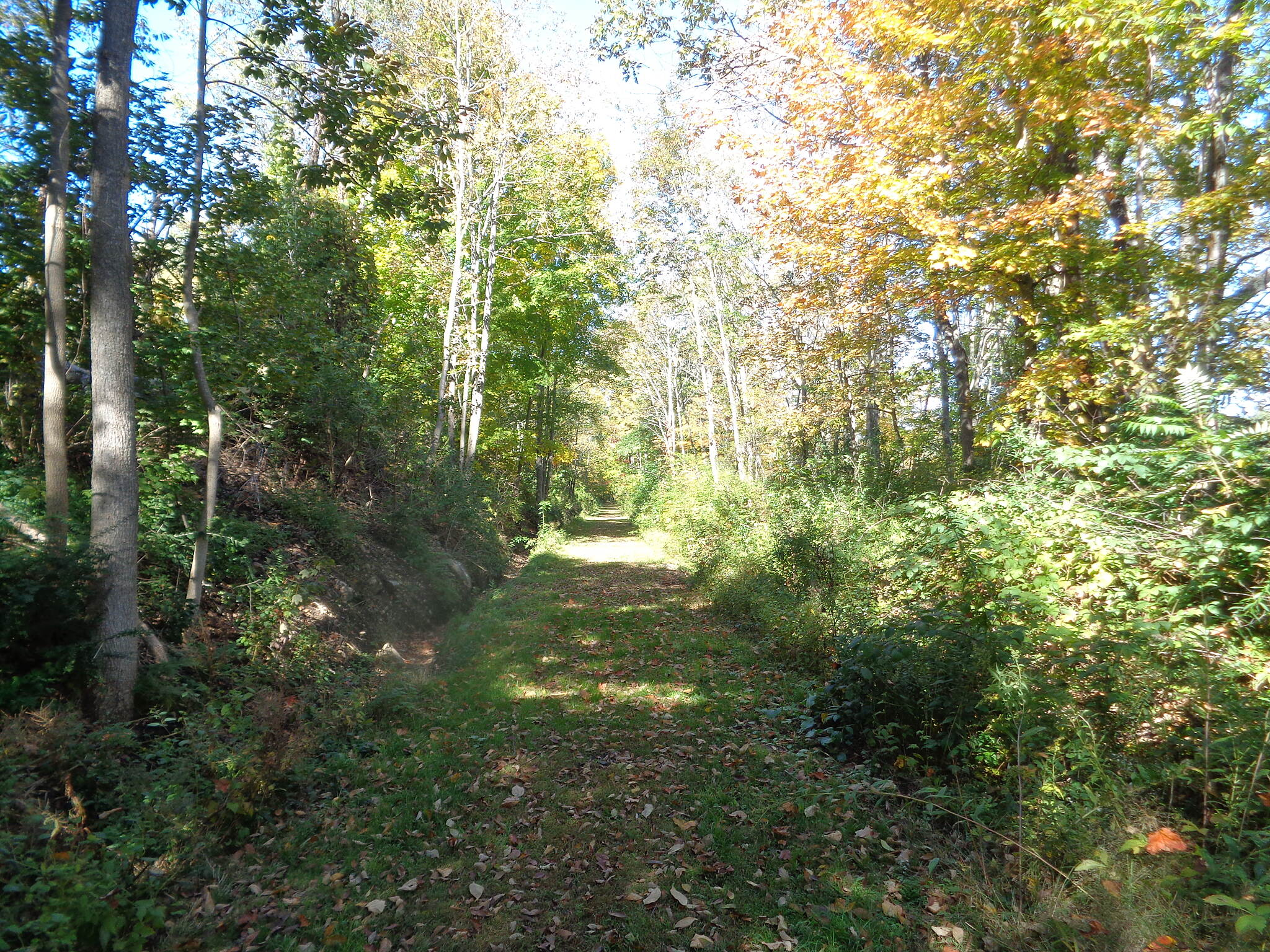 Grand Trunk Trail Nice trail in west Dudley This is a view of the very nice trail with good surface near the west edge of Dudley. on 10/5/16