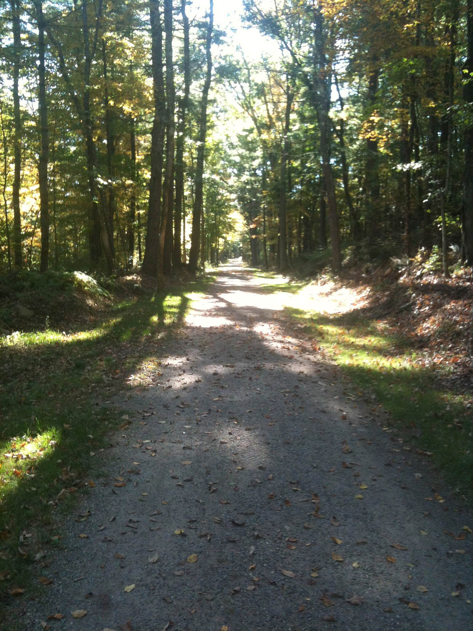 Grand Trunk Trail GTT Brimfield Section typical view westbound 9/29/13