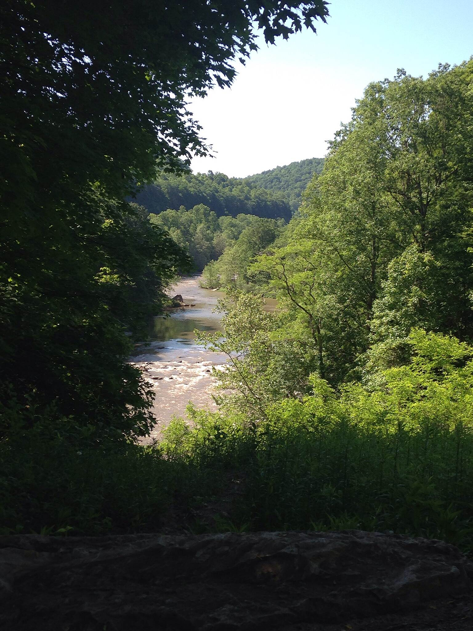 Great Allegheny Passage Fabulous view along the GAP The scenery along river trail is breathtaking. Much of the trail is lined by a canopy of trees with views of the river making this one of my favorite trails!