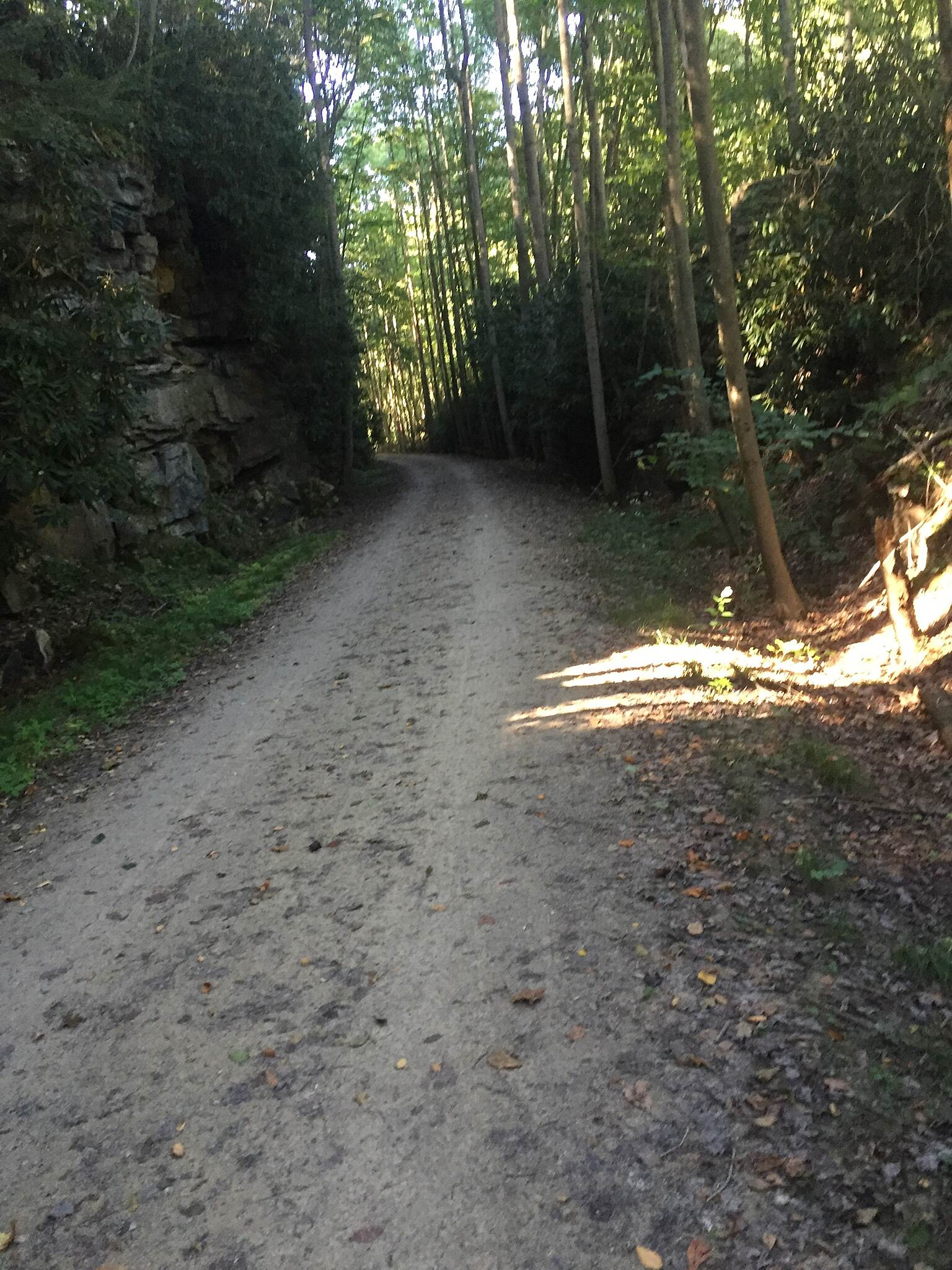 Great Allegheny Passage GAP in Ohiopyle State Park