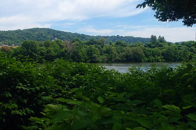 Great Allegheny Passage 7/6/14
