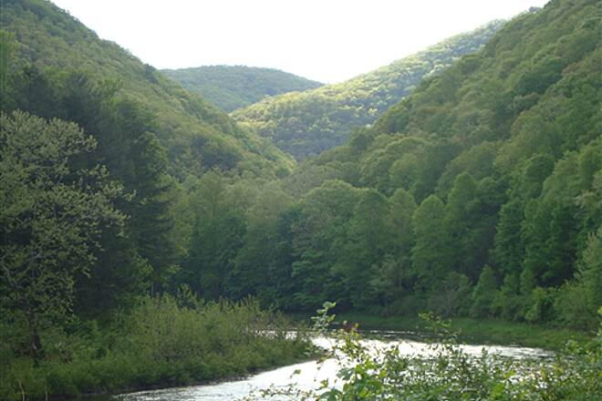 Greenbrier River Trail North of Camp @ Beaver Creek Morning - Just south of Marlinton