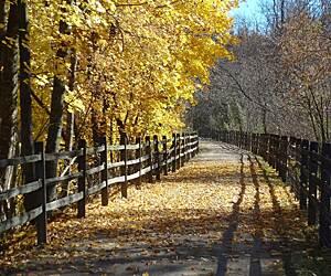 Pittsburgh, Pennsylvania Trails & Trail Maps | TrailLink
