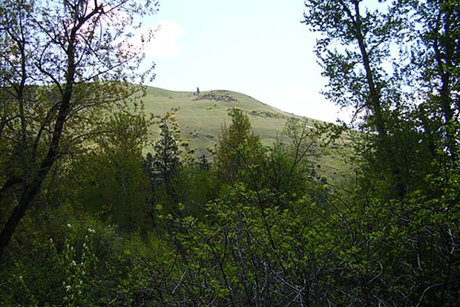 Greenough Park Trail Greenough Park 4 Mount Jumbo is visible from the park.