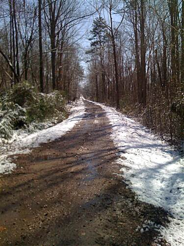 Greenville Health System Swamp Rabbit Trail Snow on the Swamp Rabbit Snow doesn't last long on the Swamp Rabbit Trail.
