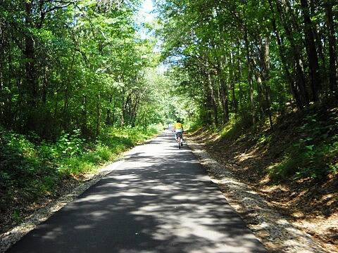 Greenville Health System Swamp Rabbit Trail Swamp Rabbit Trail - Greenville SC Trail now fully paved from Greenville to Travlers Rest SC.