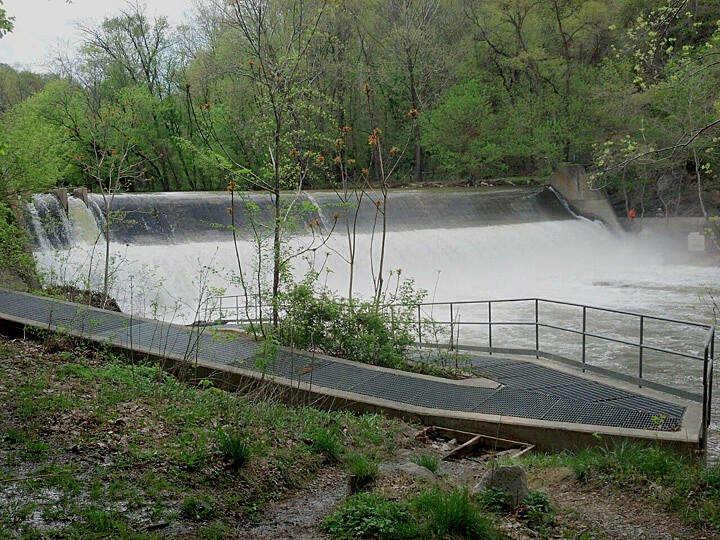 Grist Mill Trail at Patapsco Valley State Park Bloede Dam Several days after major rain.