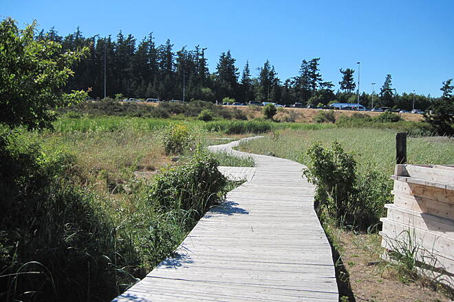 Guemes Channel Trail GUEMES CHANNEL TRAIL The boardwalk portion, under construction.