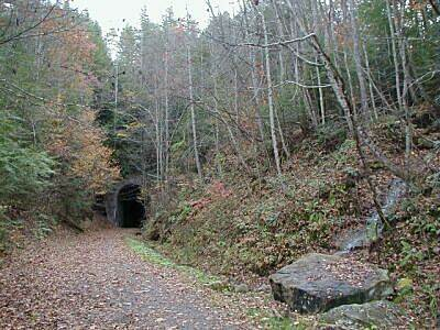 "Guest River Gorge Trail North end of ""Swede""Tunnel Shortly after start of trail you come to Swede Tunnel"