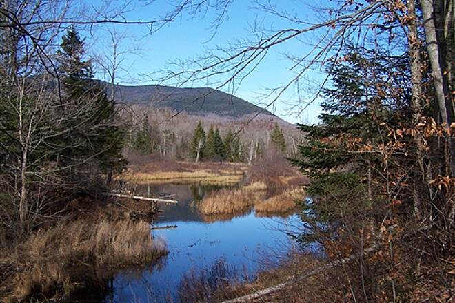 Guinea Pond and Flat Mountain Trails Beaver Pond Former Rail/Trail crosses Beaver Pond