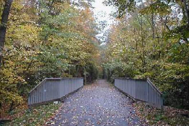 Harlem Valley Rail Trail Fall Foliage on a Wet Day