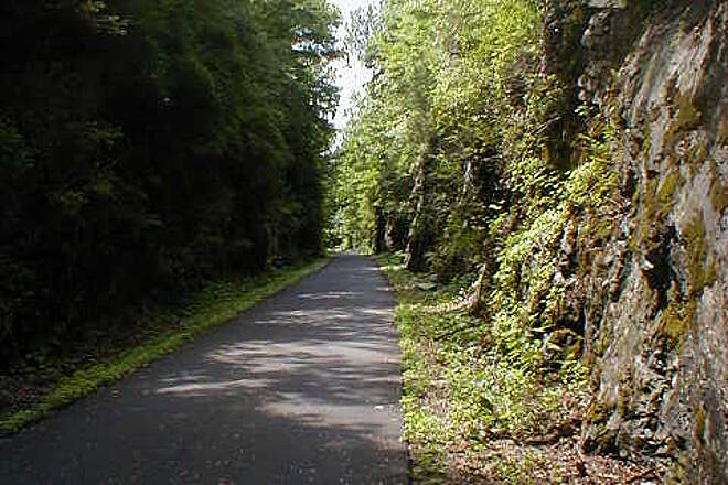 Harlem Valley Rail Trail View of the trail