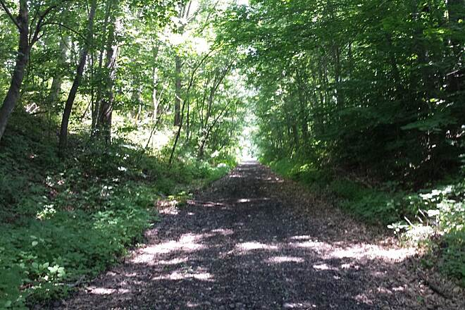 Harlem Valley Rail Trail Hillsdale trail Newly opened section of the trail in Hillsdale south of Underhill Road.  Fresh gravel was dumped here to stabilize the bed.