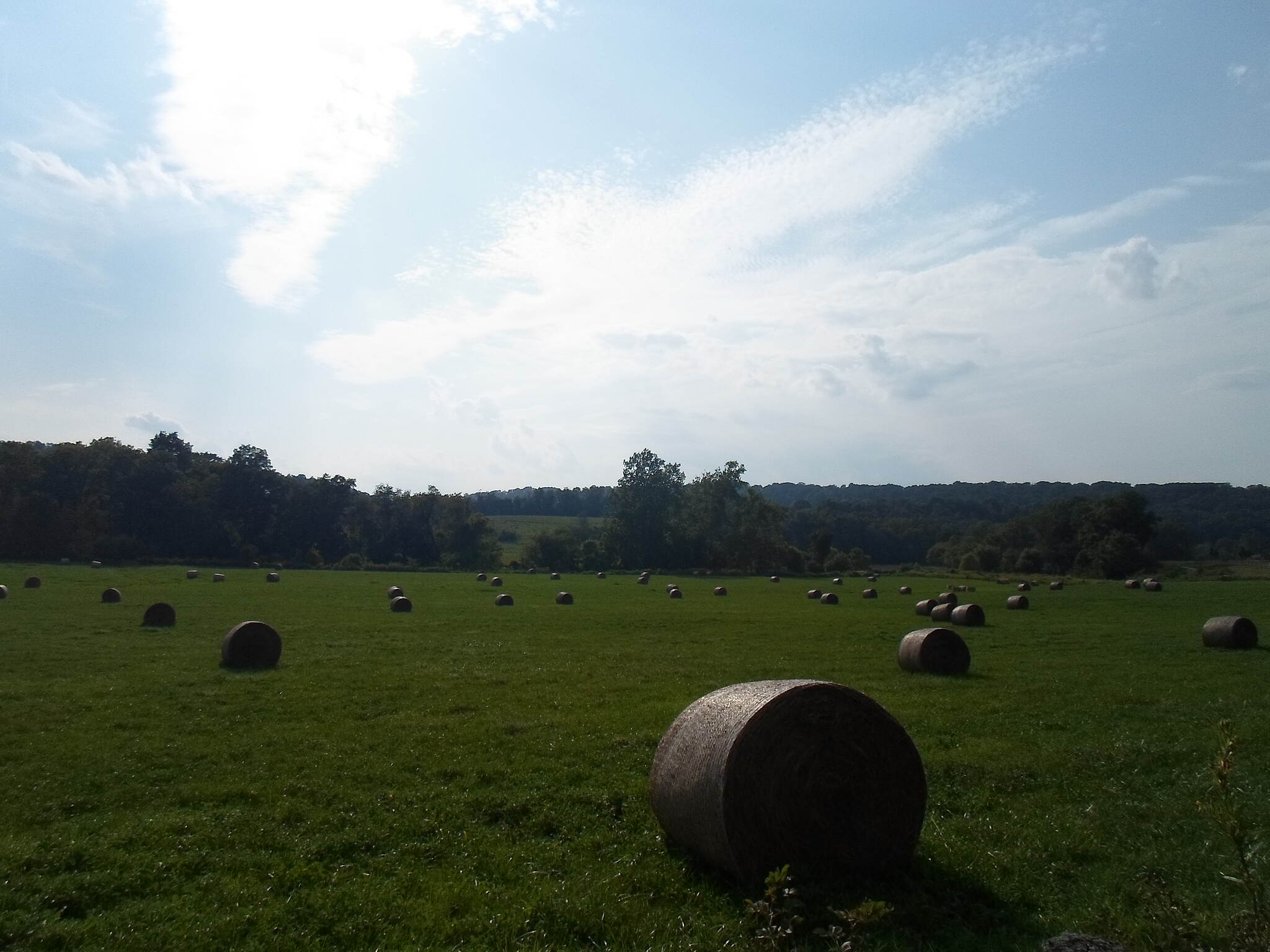Heritage Rail Trail County Park Heritage Rail Trail Hay bales under a late summer sky. Taken along the trail near Brillharts Station, Sept. 2015.