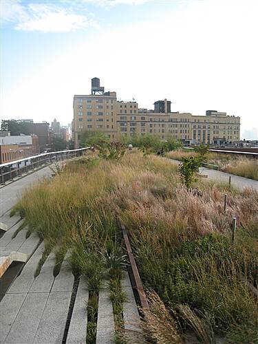 High Line The High Line Another view of the High Line's natural design
