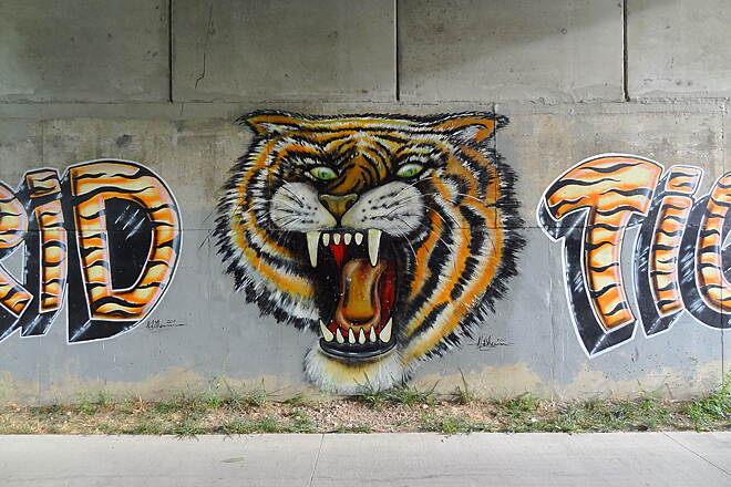 High Trestle Trail High Trestle Trail Madrid Tigers mural in the underpass.