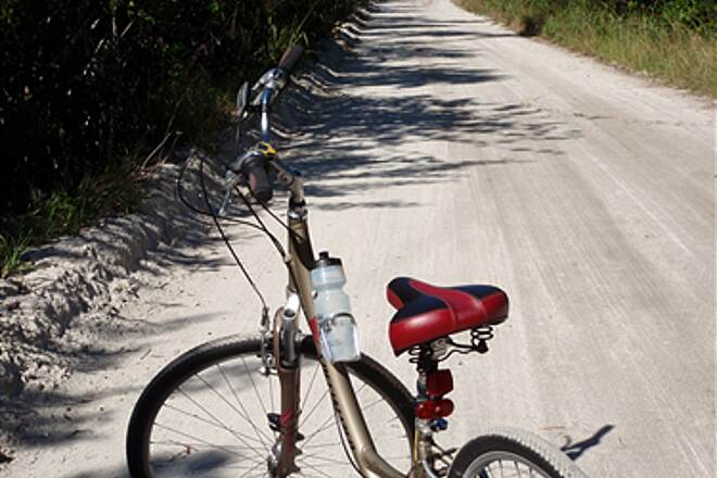 Historic Jungle TrailBike on south end of trailBike on south end of trail