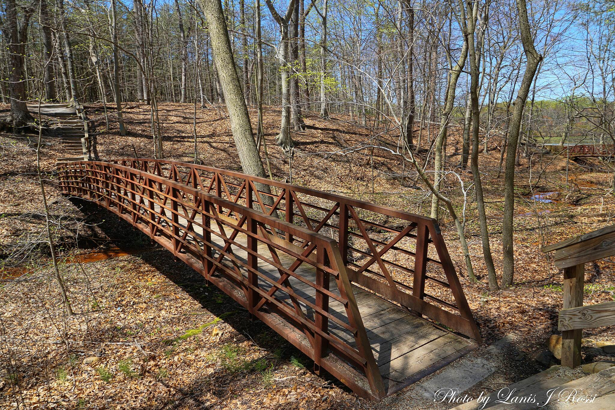 Historic Smithville Park Trails Cross Over The Bridge Historic Smithville Park Trail