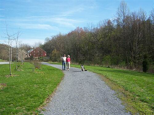 Hollow Creek Greenway Hollow Creek Greenway The greenway is very pet friendly. This couple has taken their dog for a walk on the section near the Springfield Township Sewage Treatment Plant, located behind the stone farm house.