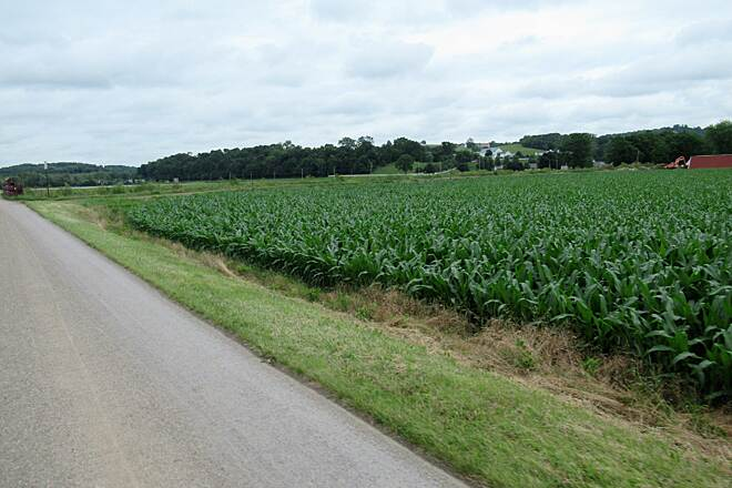 Holmes County Trail Corn's in June, 2019 the corn has been planted along the trail.