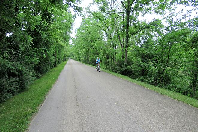 Holmes County Trail Trees along the trail June 2019 trees along the trail provide great shade