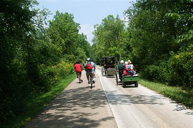 Holmes County Trail Cyclists and Amish Buggies share the Holmes Country Trail Cyclists and Amish share the two lane Holmes County trail north of Millersburg