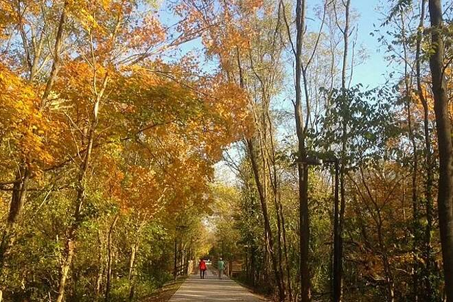 Hopkinsville Rail Trail Fall colors on the rail-trail Photos courtesy of Hopkinsville Parks and Recreation