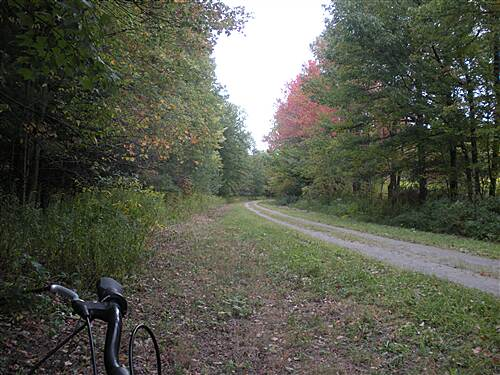 Houtzdale Line Trail Houtzdale line Fall is on the way