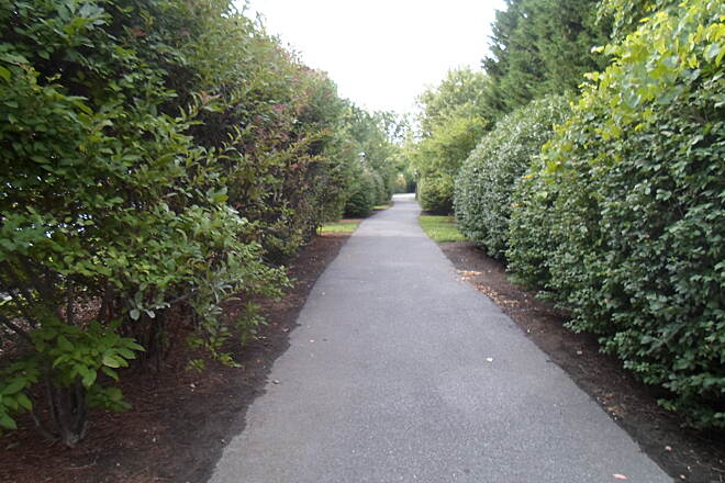 Industrial Track Greenway Trail New Castle Industrial Track Hedges line the trail in New Castle.