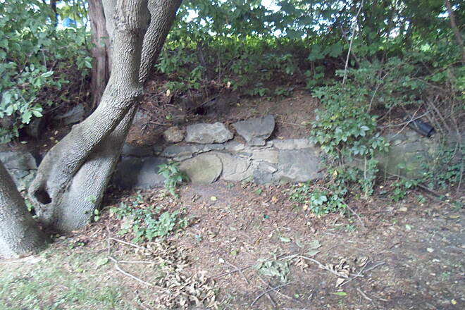 Industrial Track Greenway Trail New Castle Industrial Track Small stone wall off the trail in New Castle.