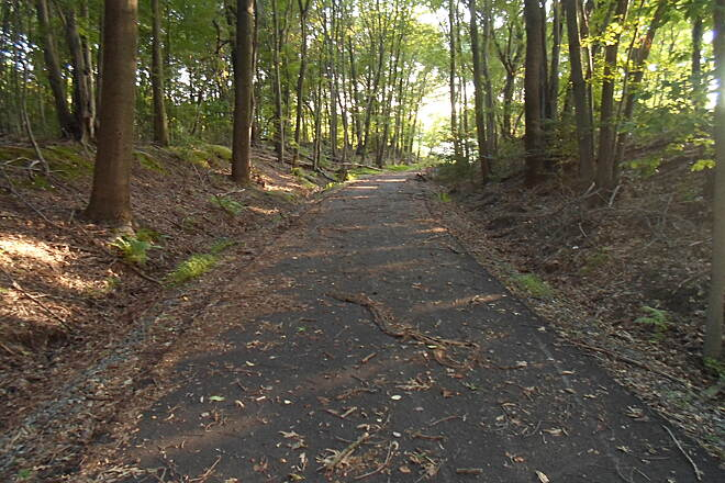 Industrial Track Greenway Trail New Castle Industrial Track Because it still gets little use, the completed, northern portion of the trail is littered with debris in the woods immediately south of Baylor Blvd. However, work is being done to connect the two sections of the trail as this is being written.