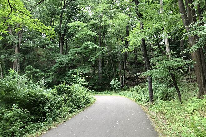 Irondequoit Lakeside Multi-Use Trail Irondequoit Lakeside Multi-Use Trail Surrounded by nature on a clear path.