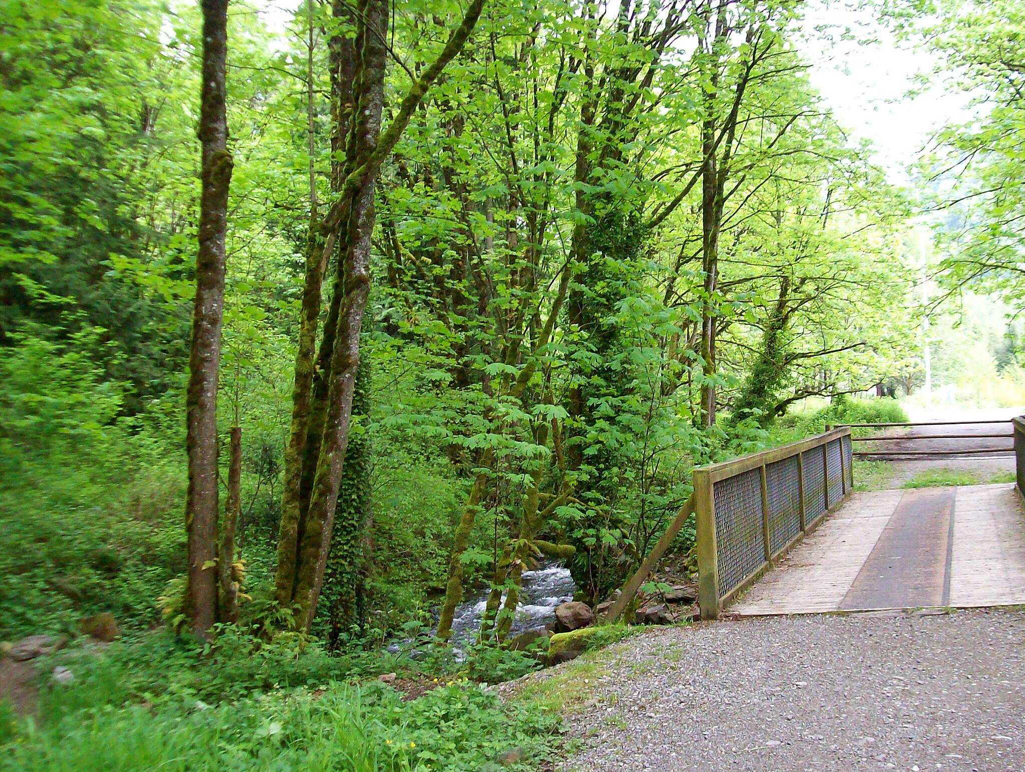 Issaquah-Preston Trail Bridge at Issaquah-Preston