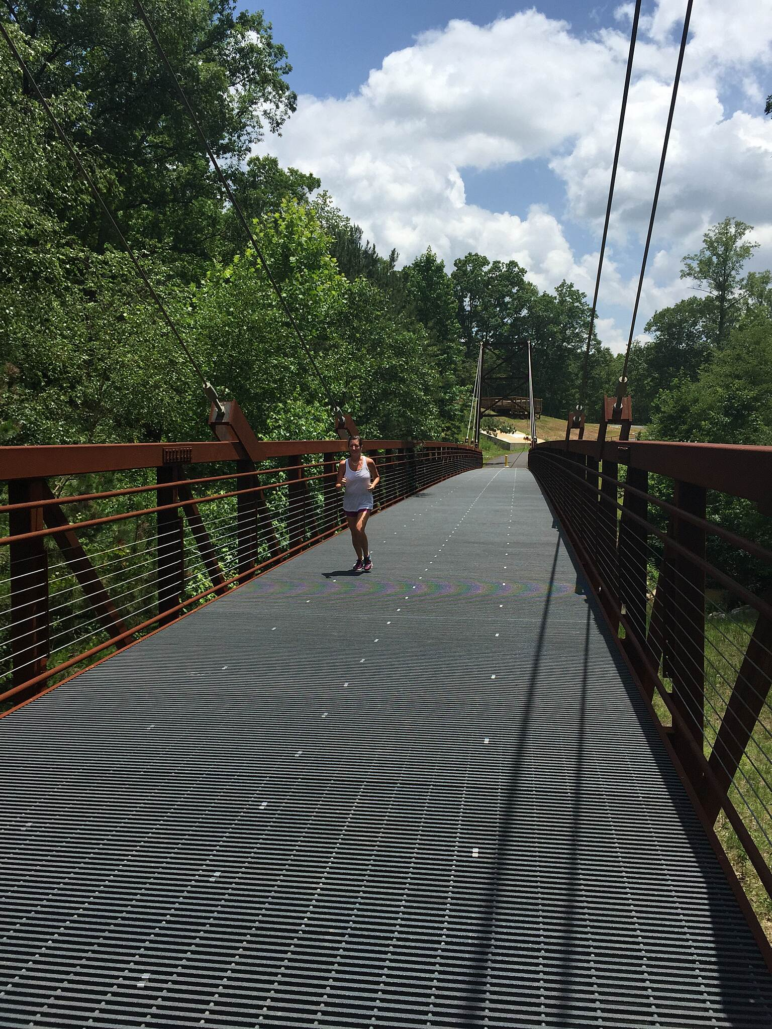 Ivy Creek Greenway really cool suspension bridge
